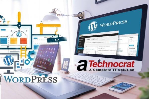 Wordpress for Website